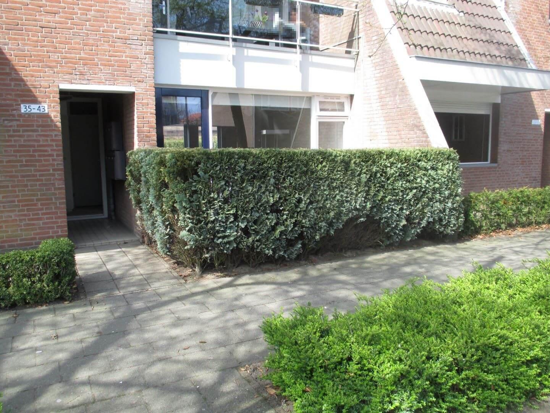 Caspar Damstraat
